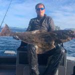 Небывалый «урожай» палтуса «собирают» те рыболовы, кто смог добраться до Норвегии