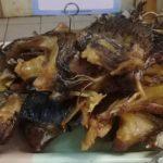 «УШКИ» ЗУБАТКИ: морская рыбалка и что делать с уловом
